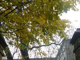 plener_fotograficzny_na_cmentarzu_6