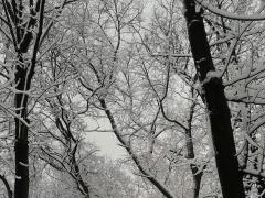 konkurs_zimowy_chorzow_i_okolice_1